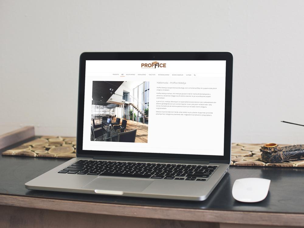 proffice-web-sitesi-3-serezart-creative-studio